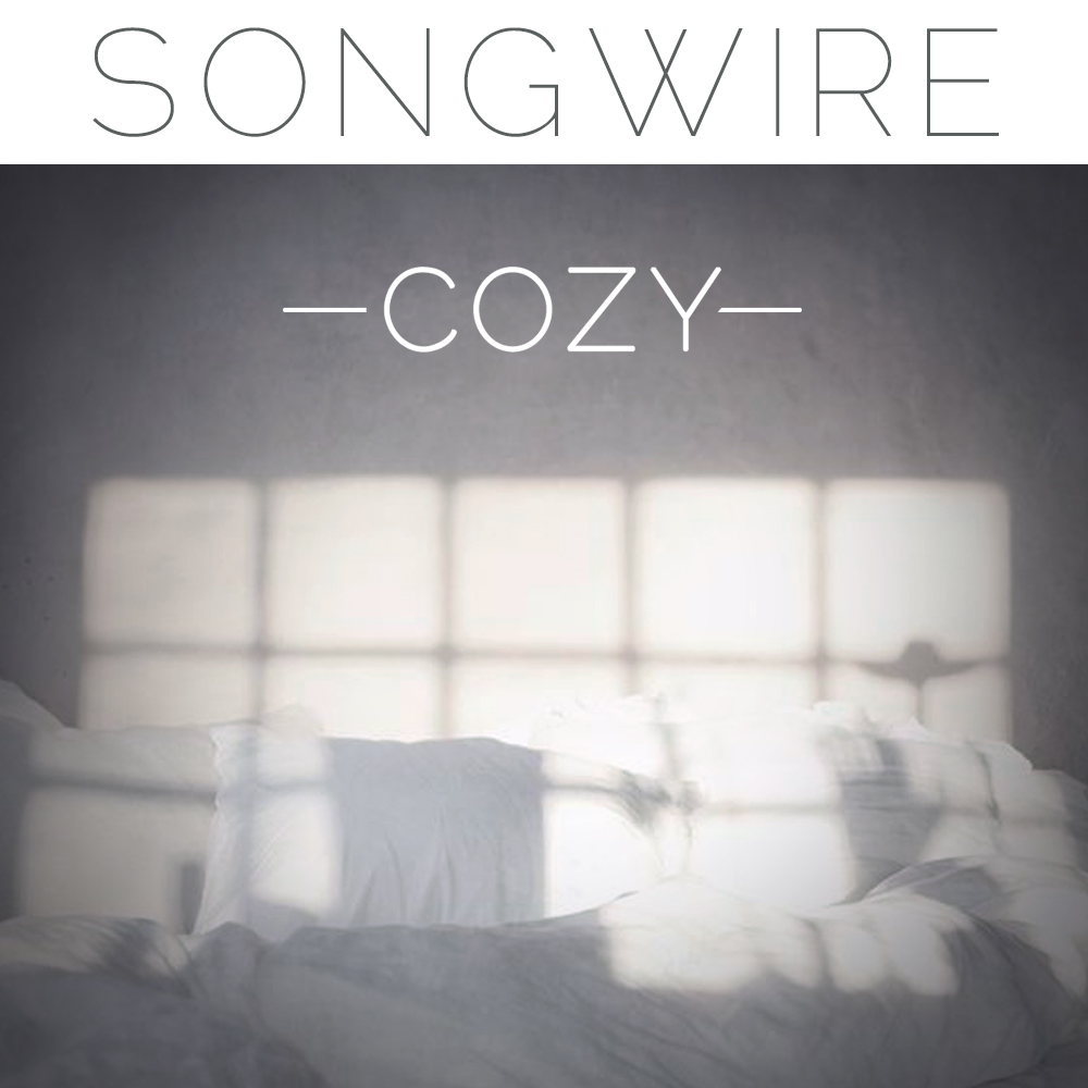 January 2016 SongWire - Don't Buy Me a Drink